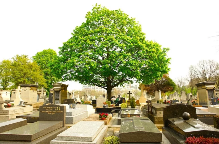Кладбища в Париже